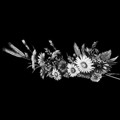 Цветок 16