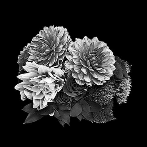 Цветок 24